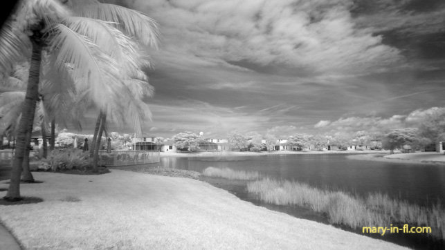 with an infrared filter 11-25-2018