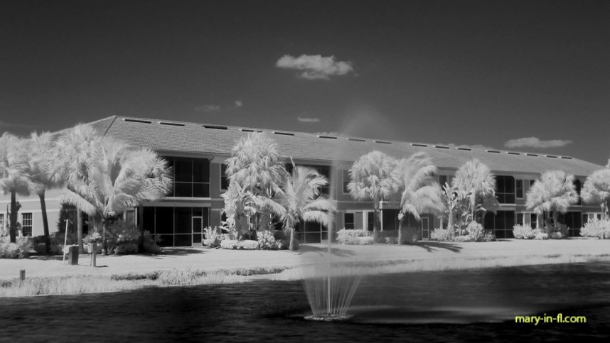 with an infrared filter 04-28-2018